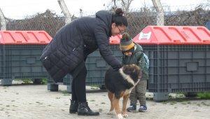 Hayvanseverlerden Mustafakemalpaşa'ya tam puan - Bursa Haberleri