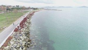İstanbul sahilleri kızıla büründü