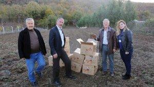 Nilüfer'de meyve yetiştiriciliği gelişecek - Bursa Haberleri