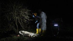 Başıboş köpeklerin saldırısı sonucu hayatını kaybetti