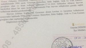 Bursa'da 'şap' karantinası - Bursa Haberleri