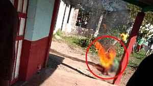 Cinsel istismarın bedeli ağır oldu... Köy ortasında benzin döküp yaktılar