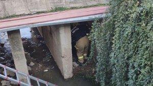 İzmir'de dereye düşen yaşlı adamı itfaiye kurtardı