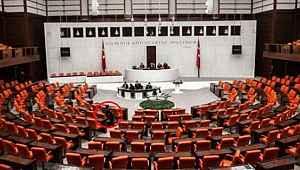Sosyal medya bu kareyi konuşuyor! Meclis'te tek başına oturdu!