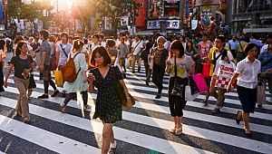 Teknoloji devi ülkede işçi krizi büyüyor! Firmalar teker teker iflas ediyor
