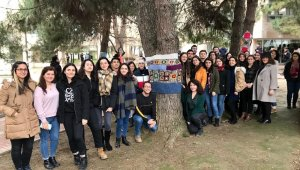 Üniversiteliler ağaçları giydirdi - Bursa Haberleri