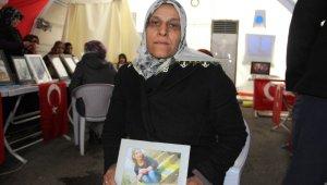 Ailelerin direnişi sürüyor, terör örgütü PKK'da çözülmeler devam ediyor