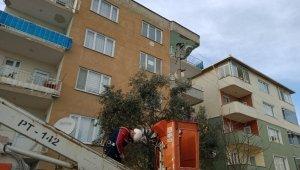 Bursa'da kedi kurtarma operasyonu - Bursa Haberleri