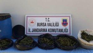Bursa'da ormanda toprağa gömülmüş halde 5 kilo esrar bulundu - Bursa Haberleri