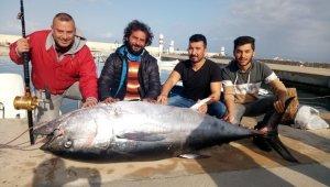 İki yüz kiloluk orkinos, Türk balıkçıları Yunan adasına sürükledi