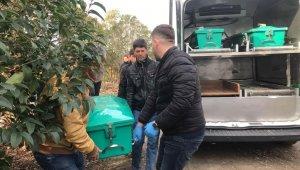 Mevsimlik işçi ölü bulundu