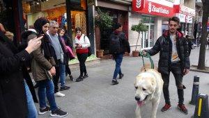 Türkiye'de daha büyüğü yok... Onu görenler şaşkınlıklarını gizleyemedi