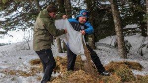 Uludağ'da yaban hayvanlarına kar motorlarıyla yem götürüldü - Bursa Haberleri