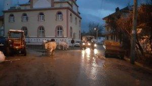 Uşak'ta barajın çatlaması nedeniyle köylüler tahliye ediliyor