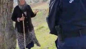 Jandarma dağda hayvan otlatan yaşlı kadını böyle uyardı - Bursa Haberleri