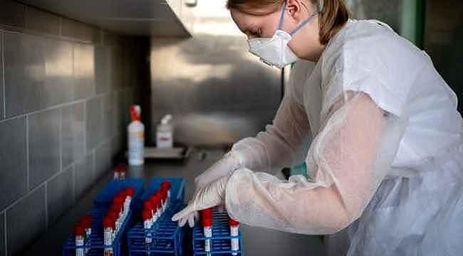 Koronavirüs araştırmalarında virüsün 40 mutasyonu bulundu