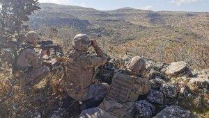 Mardin'de operasyonlar aralıksız devam ediyor
