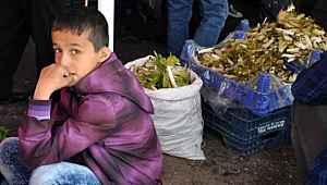 O şehirde, çocukların market ve pazar yerlerine girmeleri yasaklandı