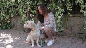 17 yaşındaki kayıp köpeğini bulana 5 bin TL ödül verecek