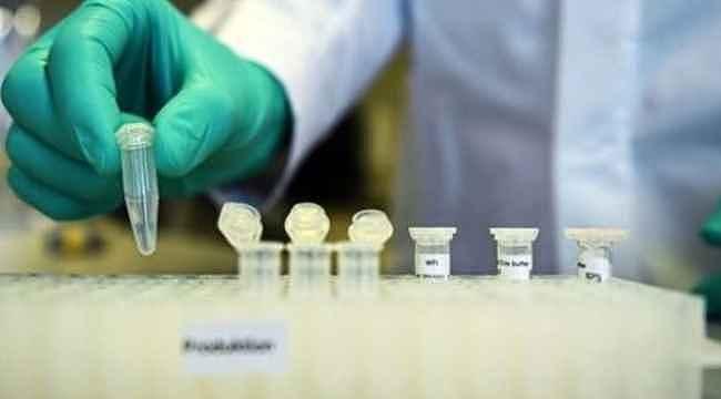 Bilim insanları koronavirüsün zayıf noktasını buldu