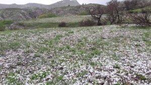 Elazığ'da misket büyüklüğünde dolu yağdı