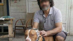 Havlayan köpekleri ve sahibini bıçakladılar