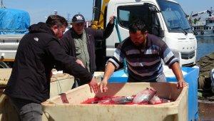 Koronavirüse karşı bağışıklık sistemini güçlü tutan somon balıklarına talep arttı