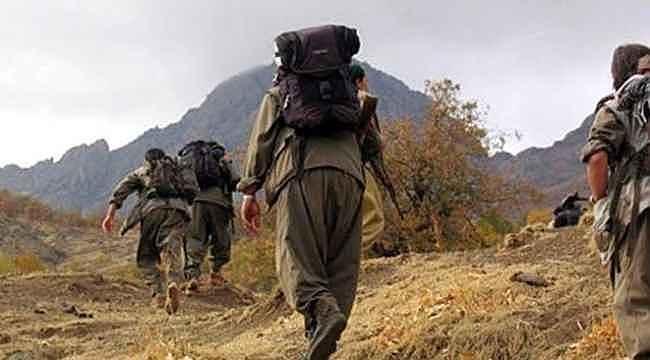 PKK, Diyarbakır'da odun toplamaya giden köylülere saldırdı