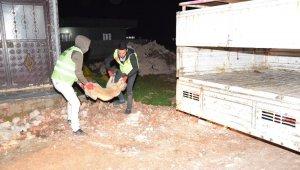 Şanlıurfa'da dehşet: Sokak köpekleri 6 çocuğu yaraladı