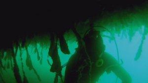 Su altında bulduğu altınlarla hayvanlara mama alıyor