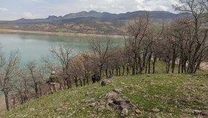 Tunceli'de baraj gölünde ceset bulundu