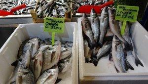 Vatandaş ucuz balık yesin diye fiyatları yarı yarıya düşürdü - Bursa Haberleri