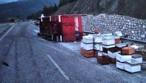 250 kovan arı taşıyan kamyon kaza yaptı, yanına kimse yaklaşamadı