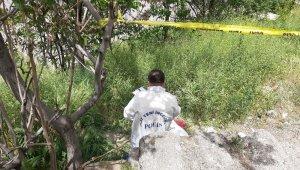 Ankara'da ağaçlık alanda yeni doğan bebek cesedi bulundu
