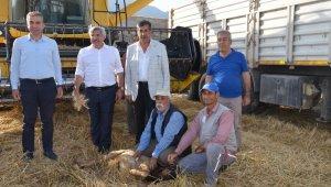 Buğday hasadı kurban kesilerek başladı