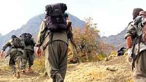 Gri kategoride aranan 2 terörist, Siirt'te etkisiz hale getirildi