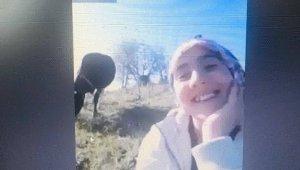 İnek otlatırken EBA canlı derse katılan kıza, Bakan Selçuk'tan övgü