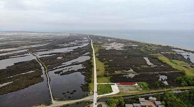 """Kızılırmak Deltası Kuş Cenneti, kararname ile """"kesin korunacak hassas alan"""" ilan edildi"""