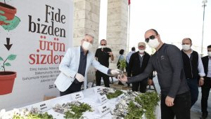 Nilüfer'de balkon tarımı başlıyor - Bursa haberleri