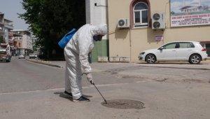Nilüfer'de çevre zararlıları ile mücadele sürüyor - Bursa Haberleri