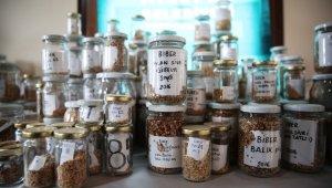 Nilüfer'de yerel tohumlar takasa hazır - Bursa Haberleri