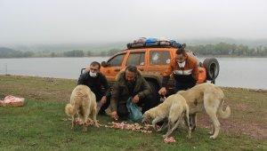 Uludağ'daki hayvanlar