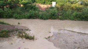 10 dakikalık dolu yağışı tarlaları vurdu