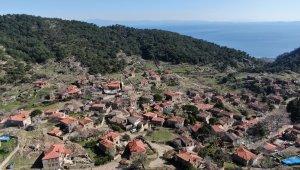 50 haneli köy 200 bin ziyaretçi ağırlıyor