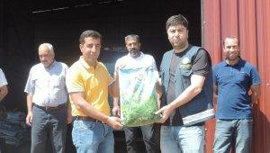 Bingöl'de çiftçilere 2 ton yonca tohumu dağıtıldı