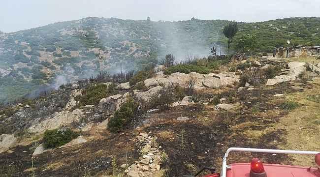 Bozdoğan'da makilik alanda yangın