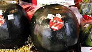 Dünyanın en pahalı meyvesi... 2 bin dolara satıldı