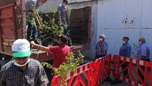 Gördes'te, 5 bin meyve fidanı dağıtıldı