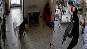 Hırsızlar elektrikçiyi soydu, dükkan içerisindeki köpek ise olayı izledi
