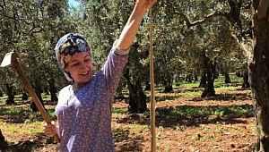 Kadın çiftçi boyundan büyük yılan yakaladı - Bursa Haberleri